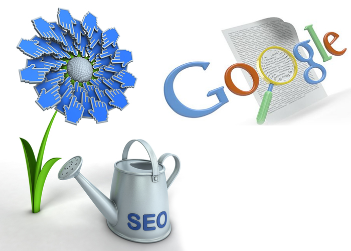 Find Best SEO Company