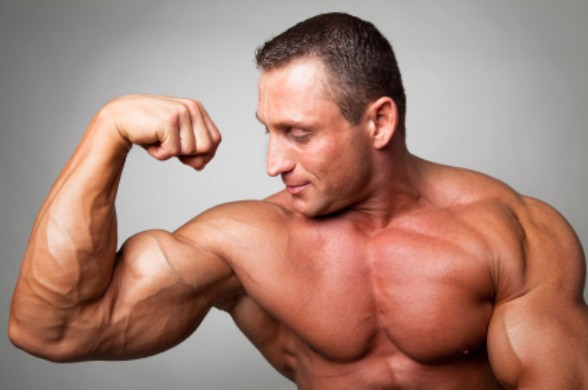 Muscles Building Tips For Beginners