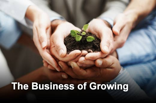 5 Ways To Take Your Business To A New Level