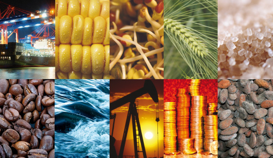 What Are Commodity Investments?