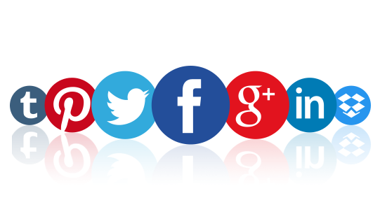 Integrating Social Networks With Marketing Campaign