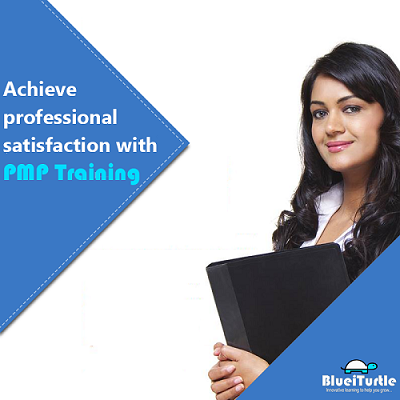 Achieve Professional Satisfaction With PMP Training