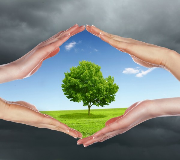 Protect The Environment With These Industrial Tips