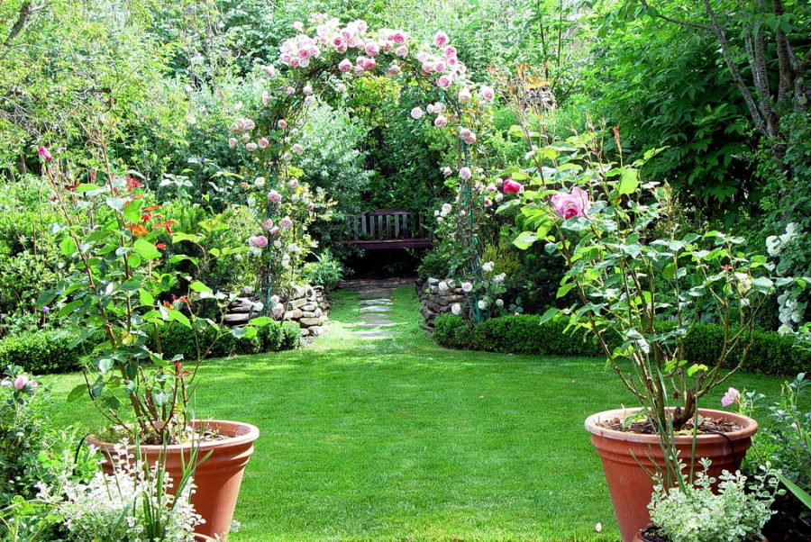 How To Maintain Your Home Garden?