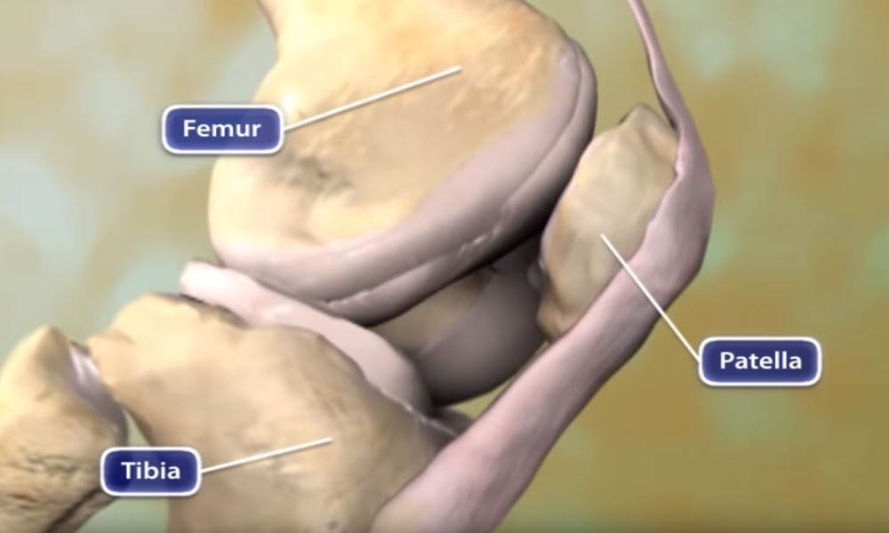 Cause and Effect Knee Replacement Surgery Is Important For Our Body