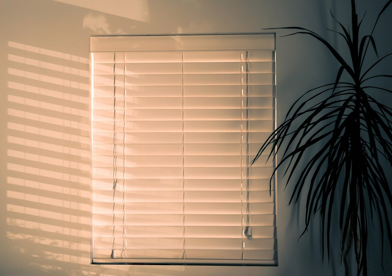 Bamboo Blinds Can Conceal A Dog Crate
