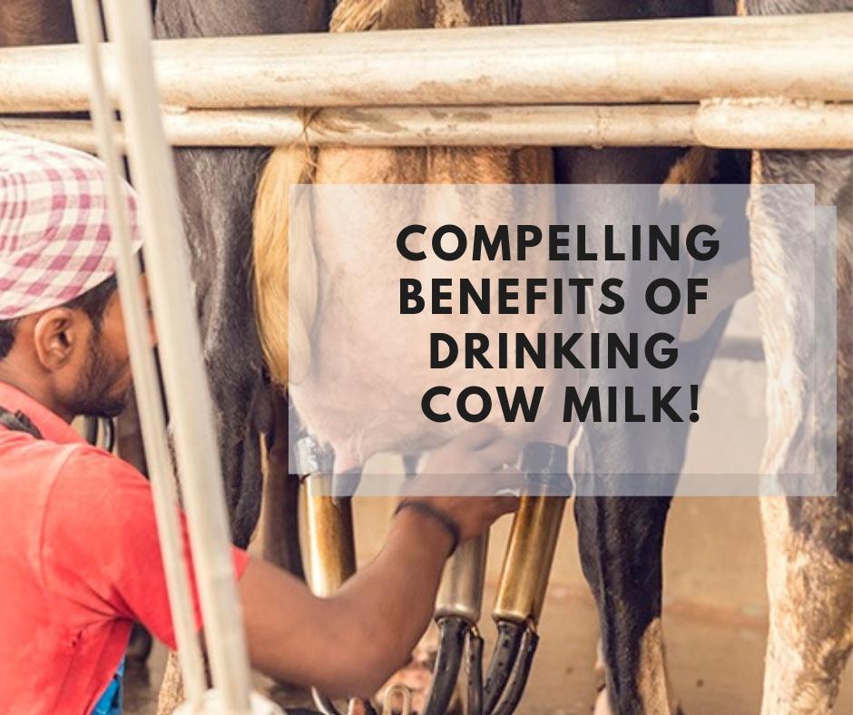 Farm fresh cow milk in delhi